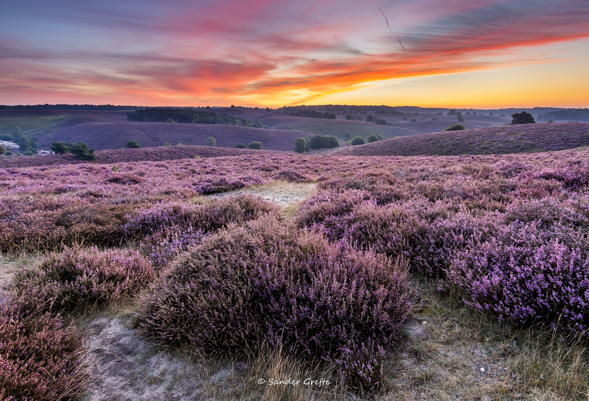The purple hills of the Posbank (a time-lapse ... Rolling Sky
