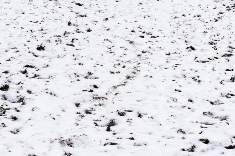 winter_posbank_4