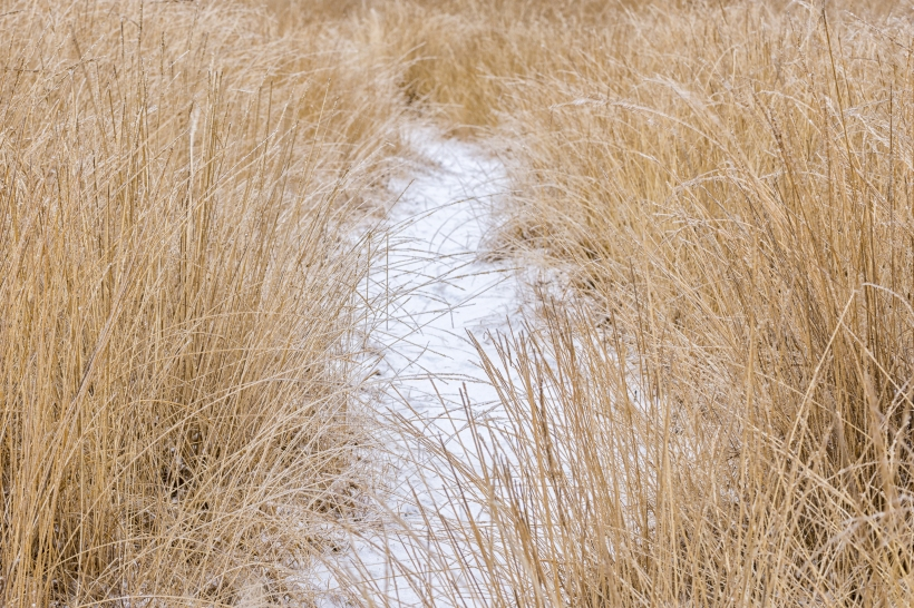 winter_posbank_7