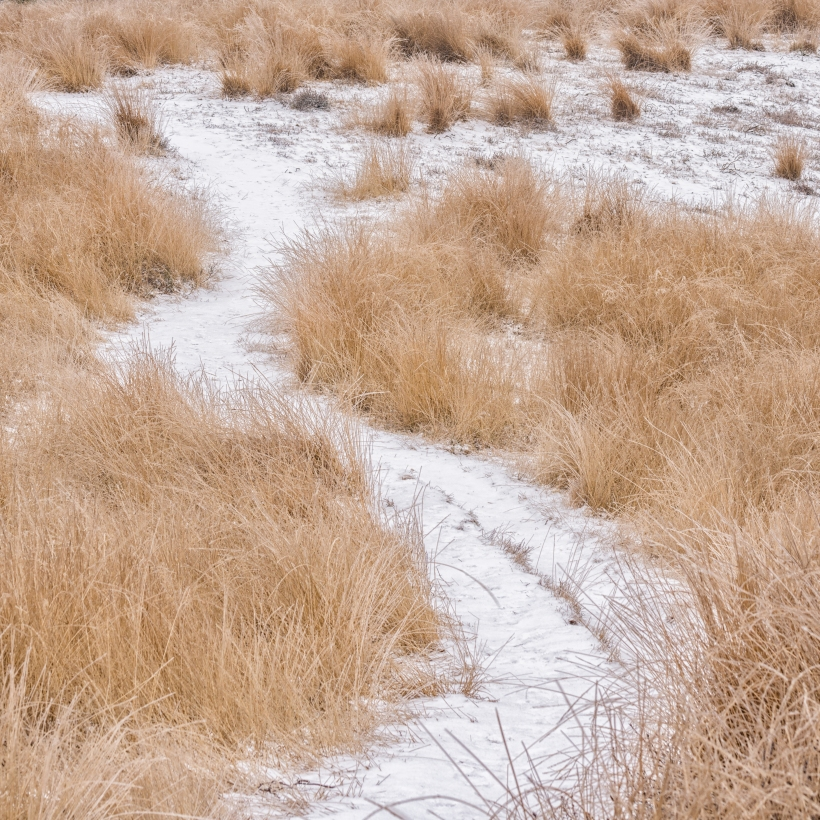 winter_posbank_8