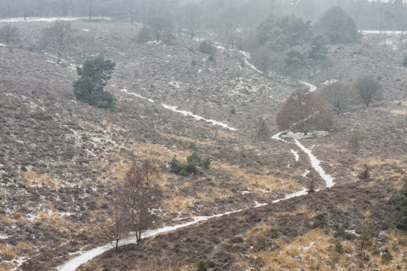 winter_posbank_9